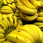 The Benefits of Using Bananas in Green Smoothie Recipes