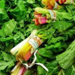 The Health Benefits of Including Leafy Green Vegetables In Your Green Smoothie Recipes