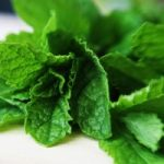 A Refreshing Green Smoothie Recipe: The Mint Medley