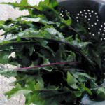 9 Reasons You Should Use Dandelion Greens In Your Green Smoothie Recipes!